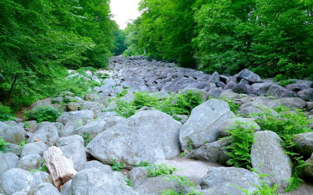 Gemeindeausflug in den Odenwald